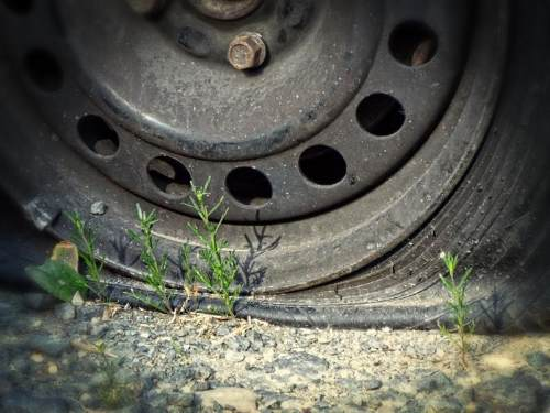 replace tires regularly